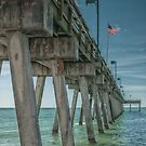 The View From the Pier by John  Kapusta