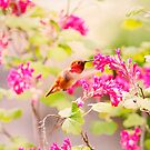 Fliegender Kolibri und Blumen von Peggy Collins
