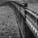 Iron Fence by Astrid Ewing Photography