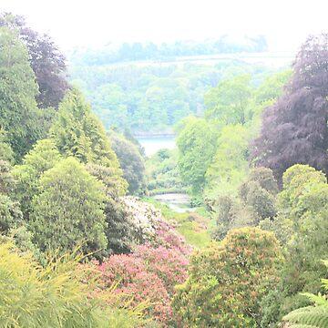 Trebah Gardens, Cornwall Photograph by BubblessandMia