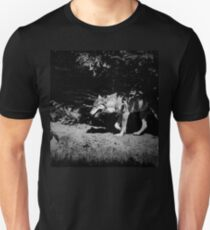 European grey wolf walking through the forest. Black and white moody photo T-Shirt