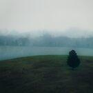 Foggy Eve  by Rachel Leigh