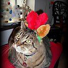 Merry Christmas by Dawn Becker