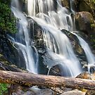 Toorongo falls by bluetaipan