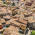Tiled roofs of Malcesine by Dobromir Dobrinov