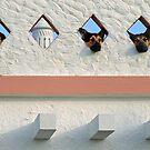Algarve Dogs by billyboy