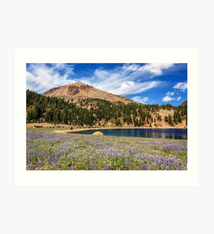 Lupines Lake Helen And Mount Lassen Art Print