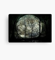 Season of the Witch Canvas Print