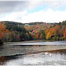 'Bass Lake in October' by Jerry Kirk