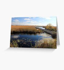 Marsh area under the sun Greeting Card