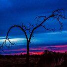 Sunrise Art 5Redmond by Richard Bozarth