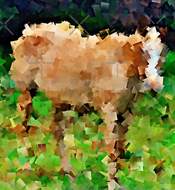 Horse to the Second Power (cubed) - greeting card and print by Scott Mitchell