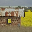 Red Brick & Yellow Fields by MIchelle Thompson