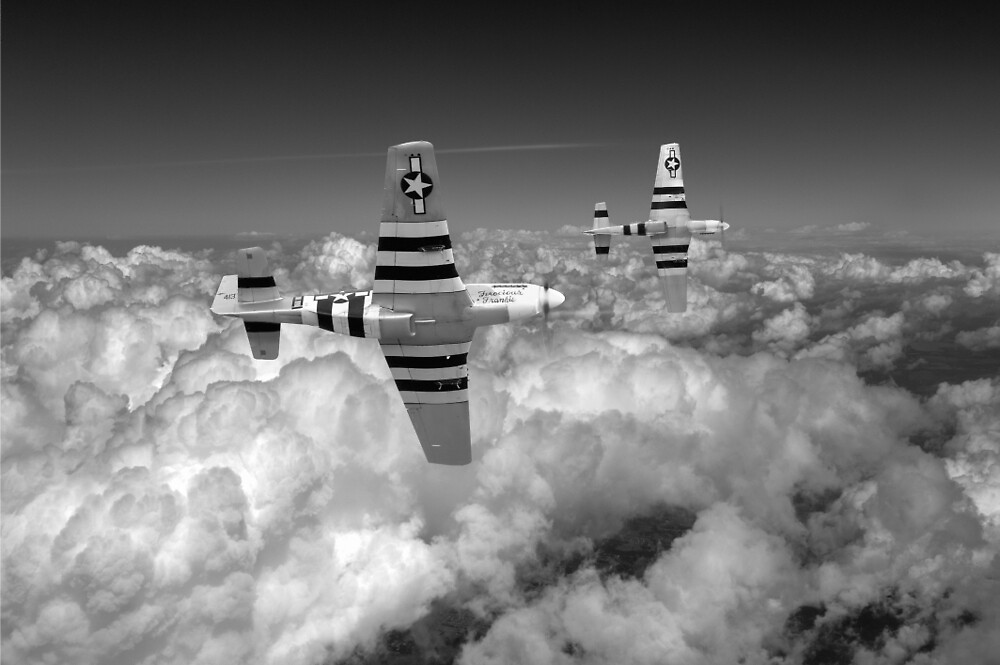 P-51s black and white version by Gary Eason