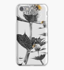 Yellow bumblebee on a black and white thistle iPhone Case/Skin
