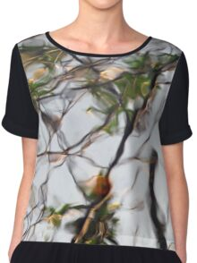 Introspect Women's Chiffon Top