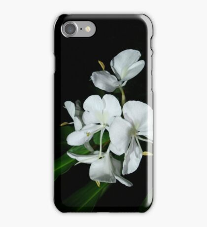 Ginger Lilies at Night iPhone Case/Skin