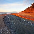 Bruce Bay by Nick Skinner