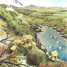 Porthclais Harbour Pembrokeshire by Helen Lush