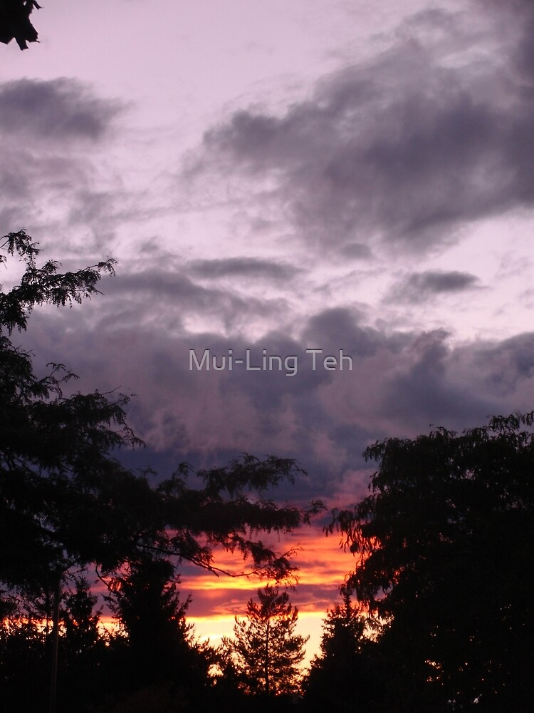 The sun was setting under the rain by Mui-Ling Teh