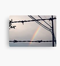 Barbedwire Rainbow Canvas Print