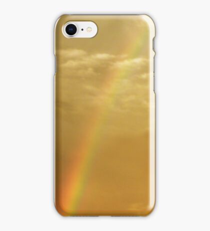 The Dragon and the Phoenix after the rain iPhone Case/Skin