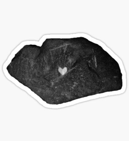 Tough Shell, Delicate Soul Sticker