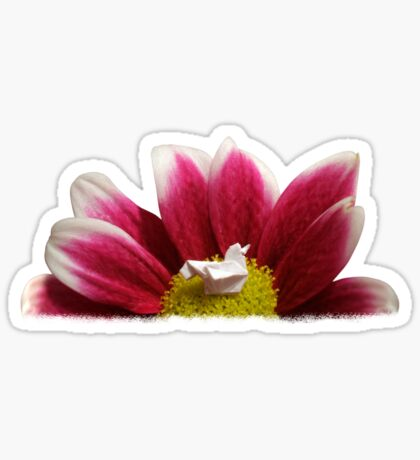 Flower Nest Sticker