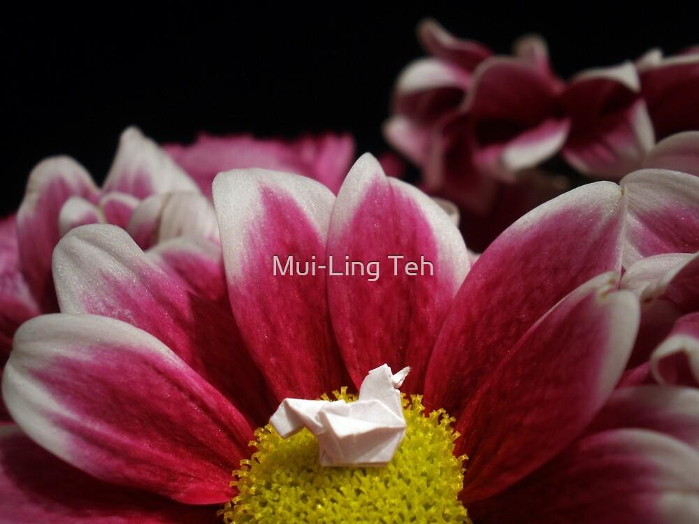 Flower Nest by Mui-Ling Teh