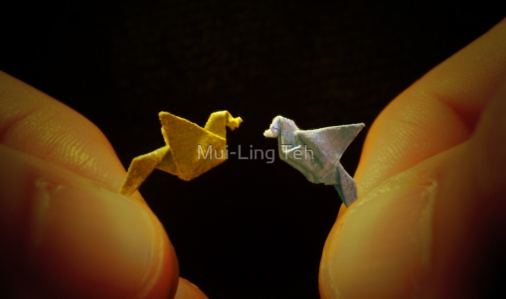 Love Birds by Mui-Ling Teh