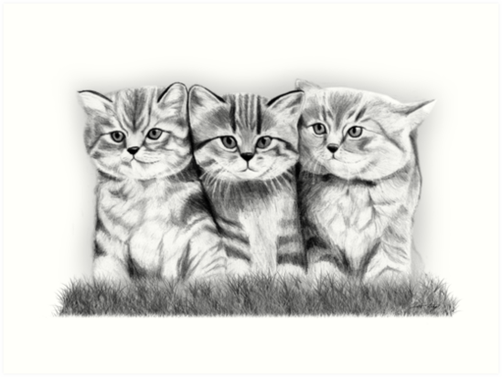 Pussy Cats by Mui-Ling Teh
