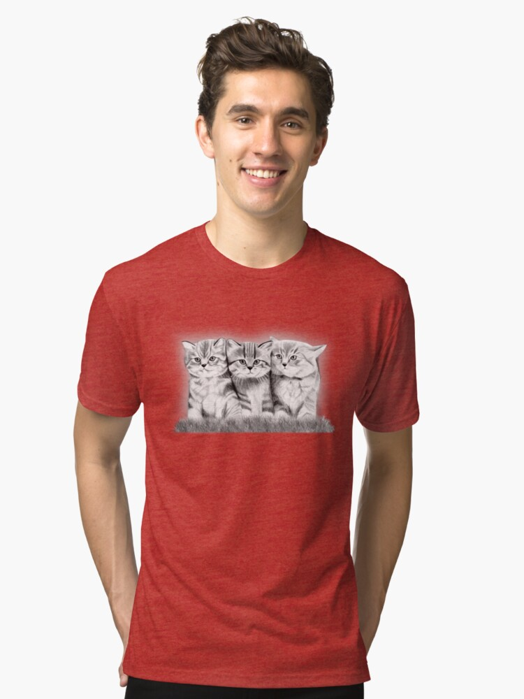 Pussy Cats Tri-blend T-Shirt Front