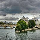 Pont-Neuf by cclaude