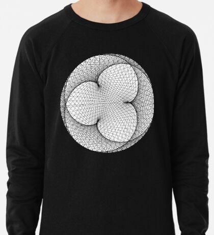 Modulo n = 294.09 m = 149.548 Lightweight Sweatshirt
