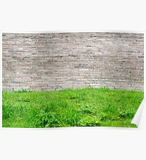 Old stone wall and green grass. Peaceful texture Poster