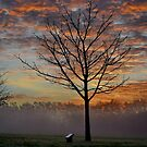 Tree on the Green by relayer51