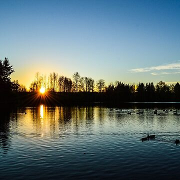 Washington Winter Sunset by DaniMorin519