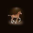 Dancing foal by Nicky Stewart