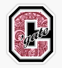 'gate paisley Sticker