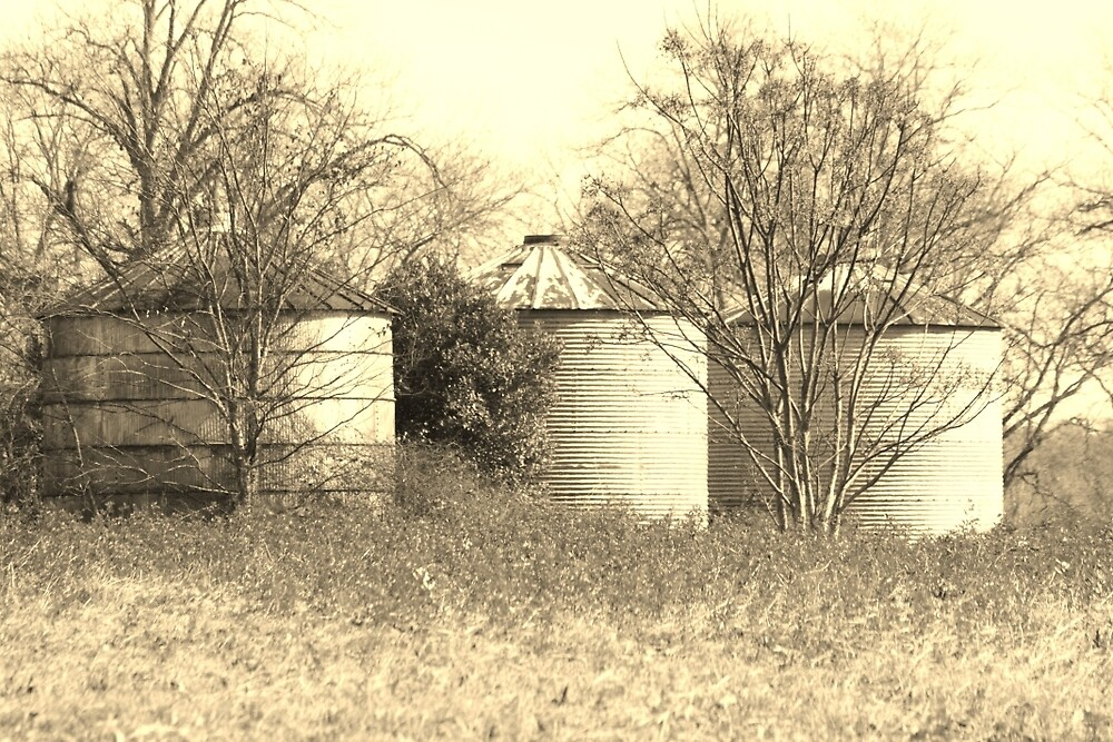 Country Silo by wingsonafield