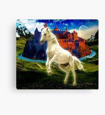 White white horse Canvas Print