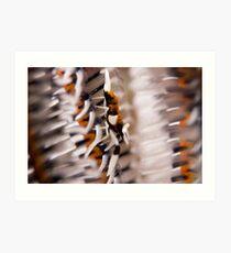 commensal crinoid shrimp Art Print