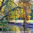 Den Brandt Park - Antwerp - Belgium by Gilberte