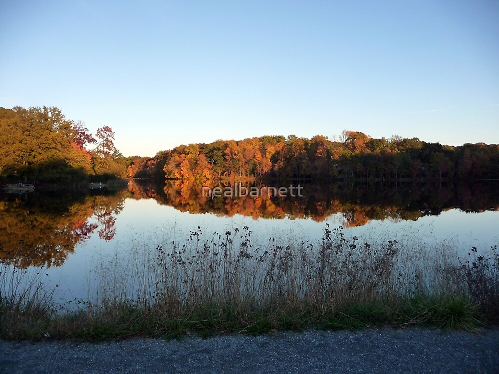 Autumn on Greenbelt Lake 7 by nealbarnett