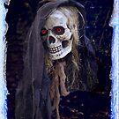 Night Skull by Kenneth Hoffman