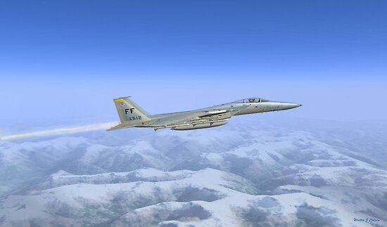 General Dynamics F-16c by Walter Colvin