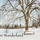 Winter Wonderland by Marilyn Cornwell