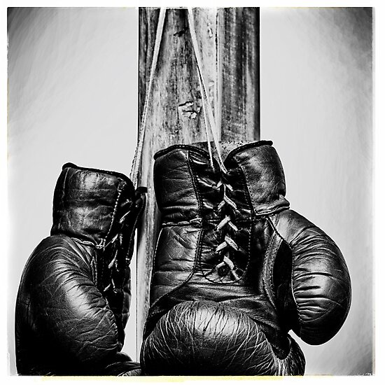 "Shiv Naresh Teens Boxing Gloves 12oz: ""Vintage Boxing Gloves"" Photographic Prints By DimDom"