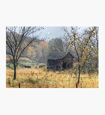 Autumn Beckons Beyond the Pasture Photographic Print