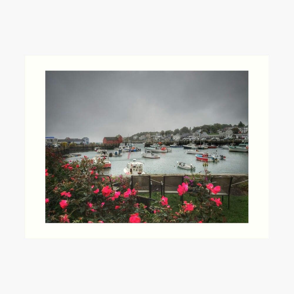 Rockport and Roses Art Print